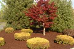 Rubber Mulch Delivery Maryland